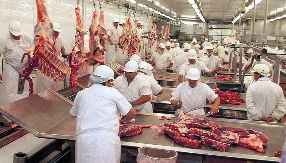 Catriel25Noticias.com frigorifico-carne 25 de Mayo: proyectan un frigorífico en las instalaciones del Matadero municipal LOCALES