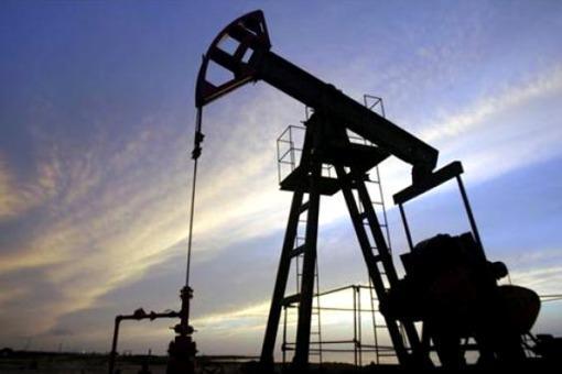 Catriel25Noticias.com 10guanaco-petroleo 25 de Mayo: Una empresa perforadora no cumple con el 80/20 NACIONALES