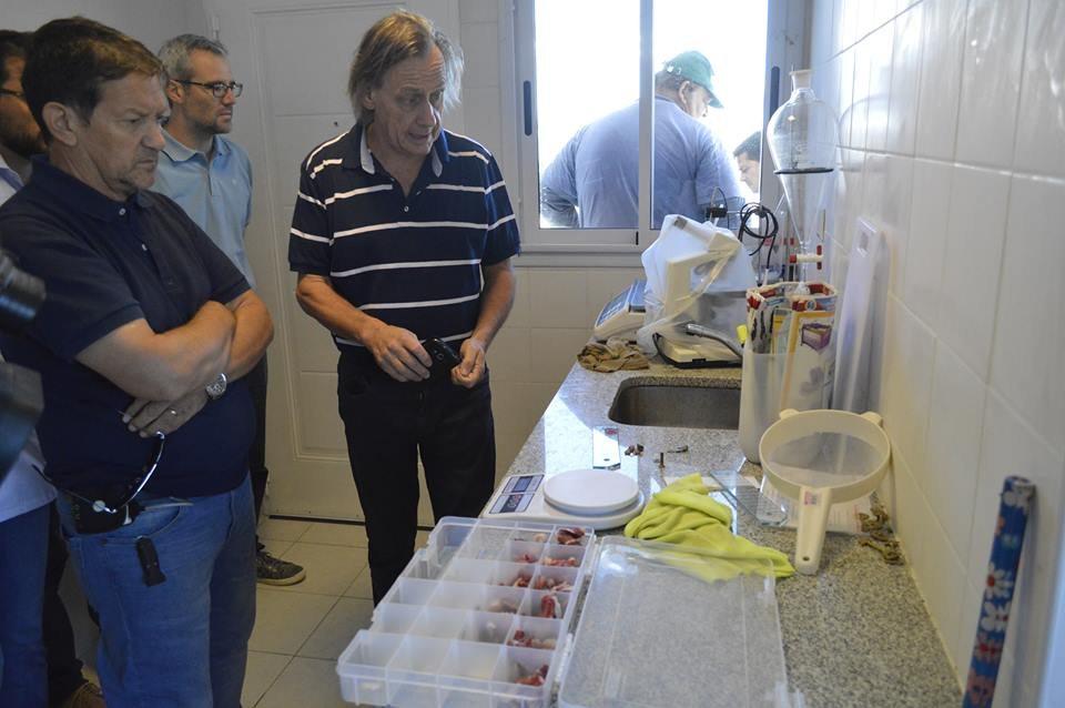 Catriel25Noticias.com cerdos-matadero3 Catriel. Productos de la Granja porcina se comercializan en el Alto Valle Destacadas PROVINCIALES