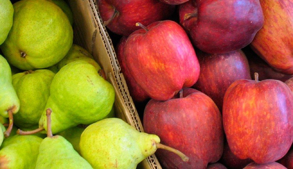 Catriel25Noticias.com peras-manzanas Brasil reanuda la importación de peras y manzanas de la Argentina PROVINCIALES