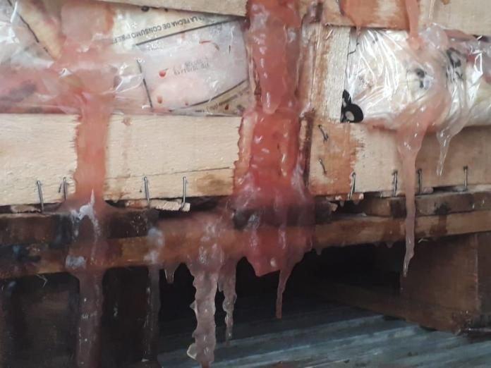 Catriel25Noticias.com carne-hielo Puente Dique. Decomisan carne bovina, pollos y huevos en la región LOCALES