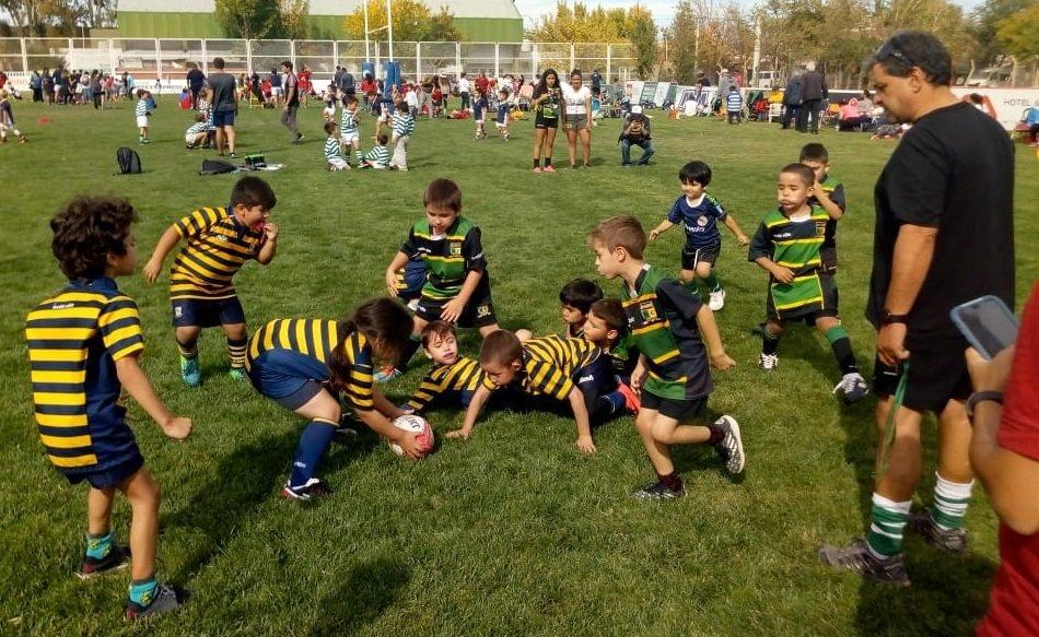"""Catriel25Noticias.com crc-minirugby2019-1-592x363 Mini Rugby con presencia Catrielense en """"Honor a Veteranos de Malvinas"""" DEPORTES"""