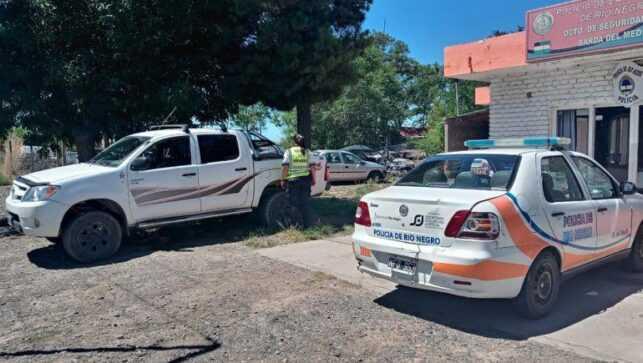 Matrimonio de Catriel circulaba con un puma escondido en la camioneta