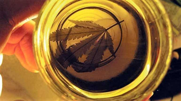 Se sancionó la ley sobre el uso medicinal del cannabis
