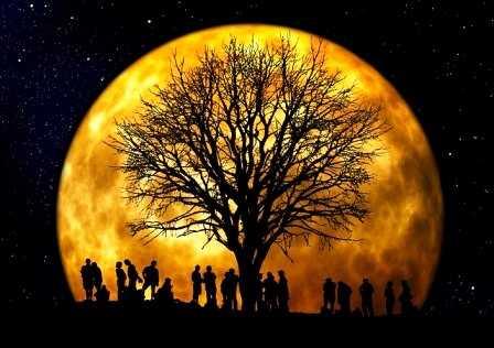 Sociedad. Cuando el árbol genealógico nos sana