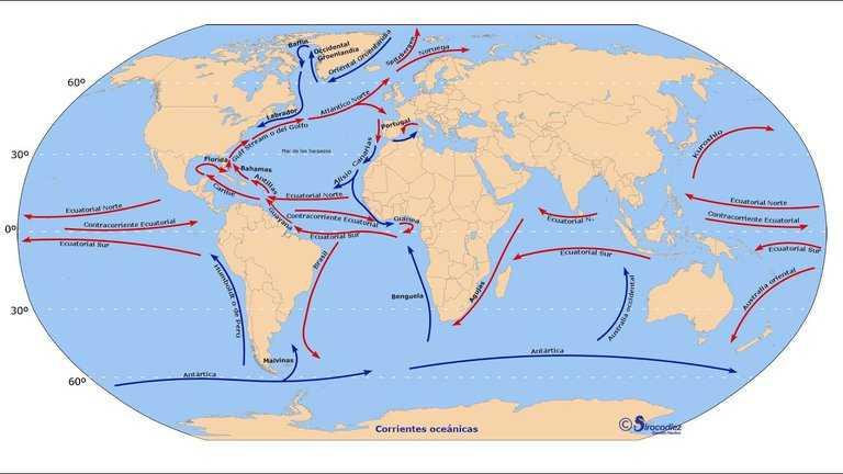Un sistema oceánico crítico puede estar rumbo al colapso debido al cambio climático