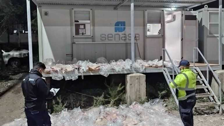 Atraparon a conductora intentando entrar a Río Negro con 65 costillares – Catriel25Noticias.com
